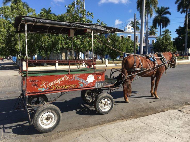 passenger-horse-cart-A